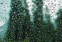 Rainy day ideas'