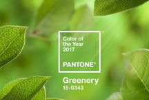 """2017 Color of the Year - Greenery / Greenery is described as """"a refreshing and revitalizing shade"""" that is """"symbolic of new beginnings"""". This fresh yellow-green hue reminds us of springtime and the beauty of nature. Shop products offered in this and other beautiful green hues at Touch of Europe."""