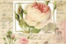 Цветы для Жанны