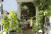 Outdoor : Balcony