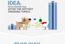 Marketing and Social Media Campaign