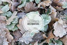 Frozen Nature / Die Schönheit der Natur in der kalten Jahreszeit.