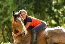 HORSES / PHOTOS OF HORSES