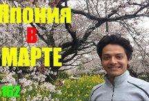 Япония Влог Vlog Japan