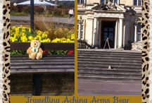 Adi Bear x / Spreading the work of Aching Arms wherever he goes in the world x