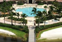 PALM BEACH GARDENS ATTRACTIONS / The wonderful South Florida town of Palm Beach Gardens is a truly outstanding place to live, work, and play. It has so much to offer its residents that this page is designed to spotlight all the attractions in the Palm Beach Gardens area.  #PalmBeachGardens #Attractions http://www.waterfront-properties.com/palmbeachgardensrealestate.php