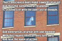 Pferdeys, gee-gees, polos, poneys, polo poneys, palominos