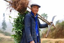 Farmer / Bauern / Landwirte