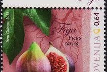 Slovenija - Slovnia Stamps