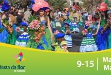 Madeira Flower Festival 2013
