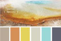 color. / by Rachel Edwards