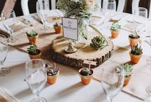 Table setting succulent