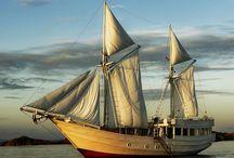 Best Island Cruises / by Islands magazine