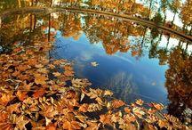Reflections / Twice as nice