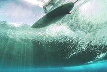 Surf 's up!