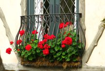 Balcony Planter Boxes