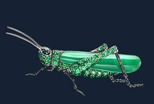 Cicada, grasshoper...
