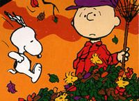 Happy fall, everyone!