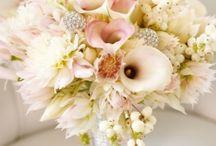 FINAL Wedding Details / by Melissa Le