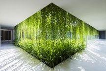 zelený ům