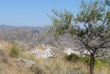 Alora, Andalusia / Properties for Sale and Rent