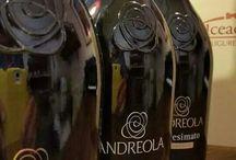 Wines / I vini che ci piacciono e che puoi bere al Dolceacqua