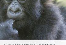 Travel: Uganda