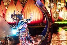 Animal Kingdom / Fotos utilizadas na matérias referentes ao parque Animal Kingdom no site!