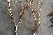 větve,prouti