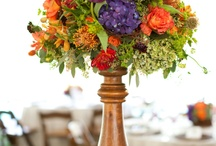 Wedding Ideas / by Karen Foulkes-Bagley
