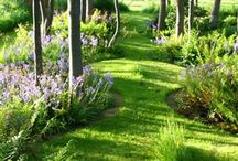 Gardens / Genuine nice gardens