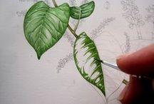 Painting methods and studies.