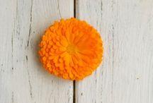 Πορτοκαλί-Orange