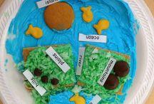 Kindergarten Science/Social Studies