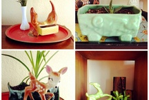 Plants for home / by LaLa Lydia Stylemasters