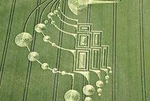 crop circles /designs