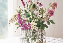 Flores | Flowers