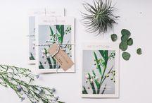 FLO atelier botânico / making our latest flower + plant dreams come true @atelierbotanico
