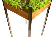 グリーン・テーブル