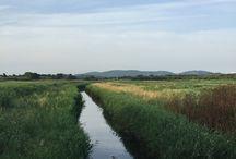 Walking / Paesaggi e situazioni nel mio camminare
