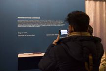 Exposición Reminiscencias lumínicas