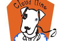CloudNineDogTraining.com / I'm addicted to dogs!