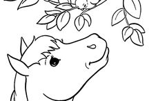 Horse Colouring Pages