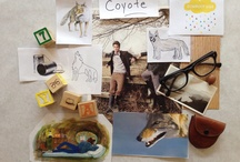 Coyote / by 2Story Productions