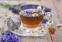 Native Drinks / Natural liquids to nourish us