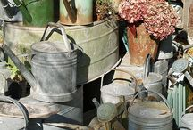 Watering cans / by Leslie Spano