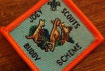 Joey Scout Badges