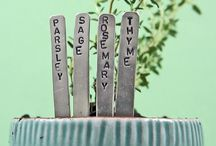 how does your garden grow / by Kate N
