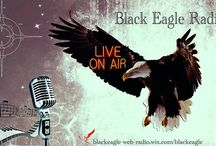 black eagle web tv radio / This radio station is dedicated to the rescuer around the world, the one that leads into battle, the one who risks his life for the common good. Through this station we will be broadcasting, interviewing, and announcing all who will be working with us. Soon, we will be ready, our opening day ceremony will be announced.