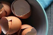 Eggshells in the garden